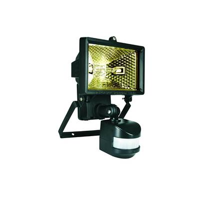 Byron ES Halogen Floodlight with PIR